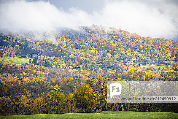 Fall in Ithaca New York