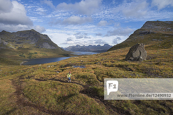 Female hiker hiking trail above Selfjord  Lofoten Islands  Norway