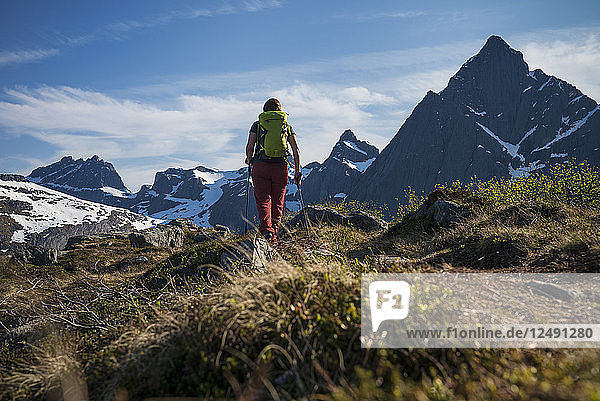 Female hiker hiking trail towards Flakstadtind mountain peak  Flakstad??y  Lofoten Islands  Norway