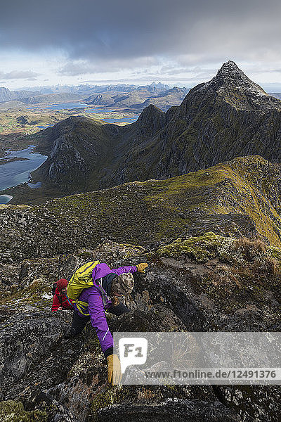 Female hikers climb steep rocky ridge towards ?òsthimmeltind mountain peak  Vestv?•g??y  Lofoten Islands  Norway