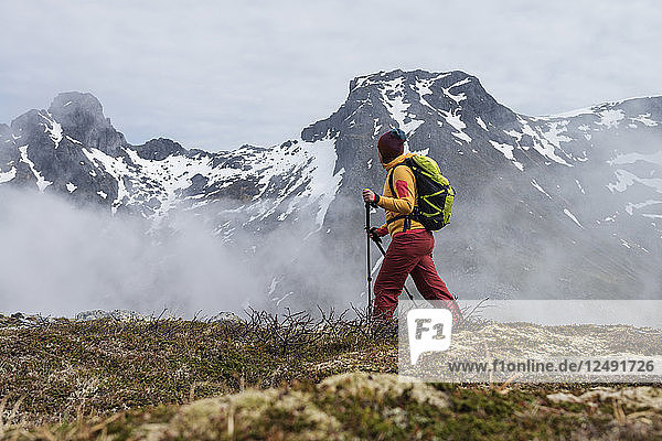 Female hiker hiking through cloudy weather towards summit of Volandstind mountain peak  Flakstad??y  Lofoten Islands  Norway