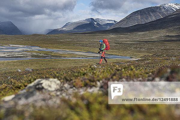 Single hiker hiking through Tj?§ktjavagge valley south of S?§lka hut  Kungsleden trail  Lapland  Sweden