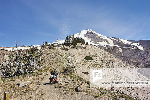 A Backpacker Ties His Shoe While Hiking The Timberline Trail On Mount Hood