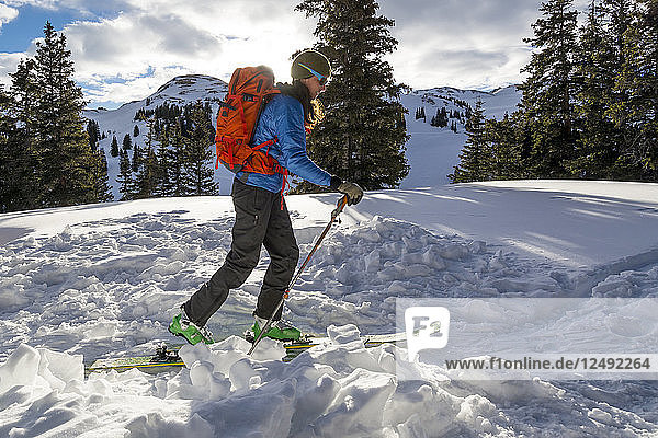 A woman backcountry skiing on Red Mountain Pass  Silverton  Colorado.