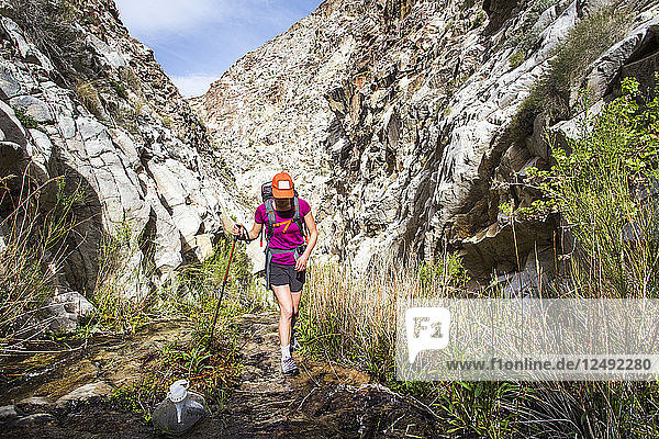 A young woman hikes up a narrow  white canyon  walking through a thin stream with a hiking pole.