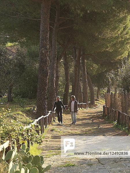Mature couple walk along path under Mediterranean pines