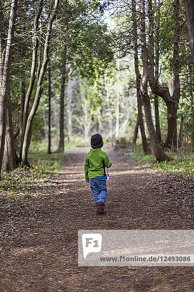 A 4 year old Japanese American boy walks along a wooded trail while exploring the Bruce Peninsula National Park  Ontario  Canada.
