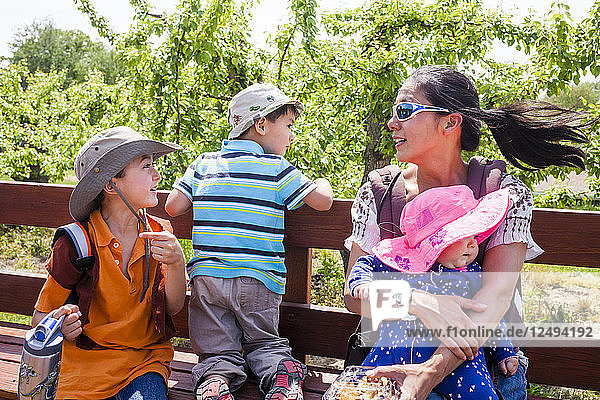 A Japanese American mom goes on a wagon ride through an apple orchard with her 6 year old son  4 year old son  and 1 year old baby girl.
