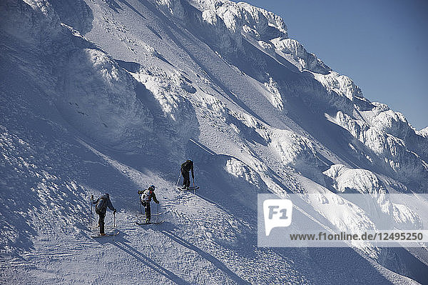 Skiers Skiing In Snowy Region Of Mount Augustine  Alaska  Usa