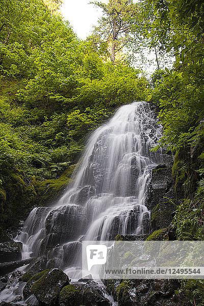Fairy Falls waterfall along Wahkeena Creek on the Oregon side of the Columbia Gorge.