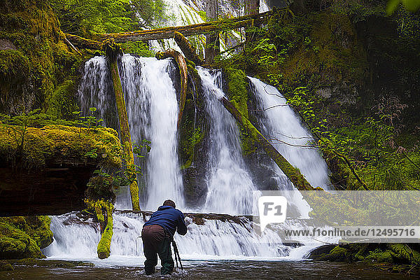 A photographer takes a picture of Lower Panther Falls along Panther Creek near Carson  Washington.