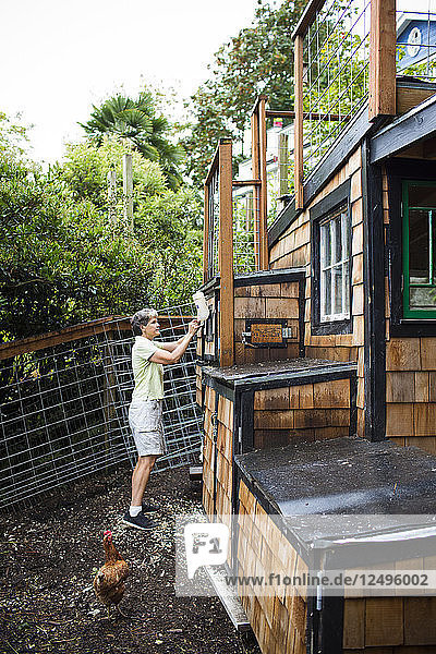 Backyard coops are growing in popularity throughout the country as people are wanting to source their food locally. Eggs come daily and kids enjoy the connection to the animals.