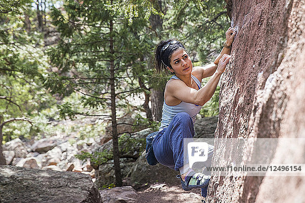 Strong female looking towards next move on a boulder problem in the Flatirons of Boulder  Colorado