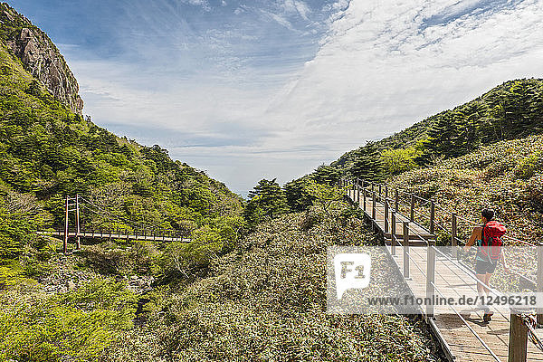 on the Gwaneumsa hiking trail to Hallasan on Jeju Island