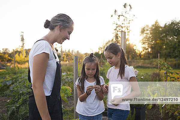 Mother And Her Two Daughter Standing In Their Garden In Fort Langley