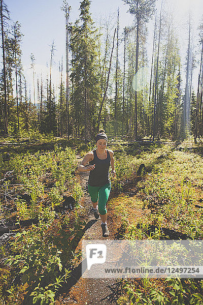 A fit woman trail running in Bowron Lake Provincial Park  British Columbia  Canada.