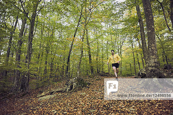 Man Running During The Morning Through A Beech Forest In The Area Of Santa Fe