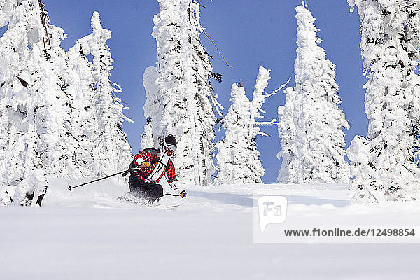 Male Skier Skiing In Fresh Powder Snow In Whitefish  Montana  Usa