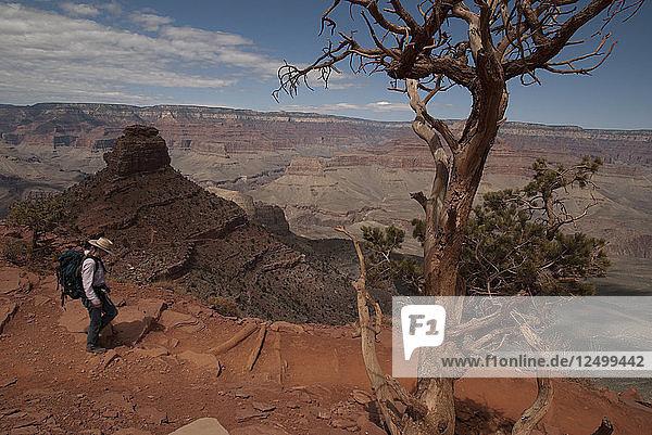 Hiking the Grand Canyon's Kaibab Trail  South Rim. Grand Canyon National Park  Arizona.