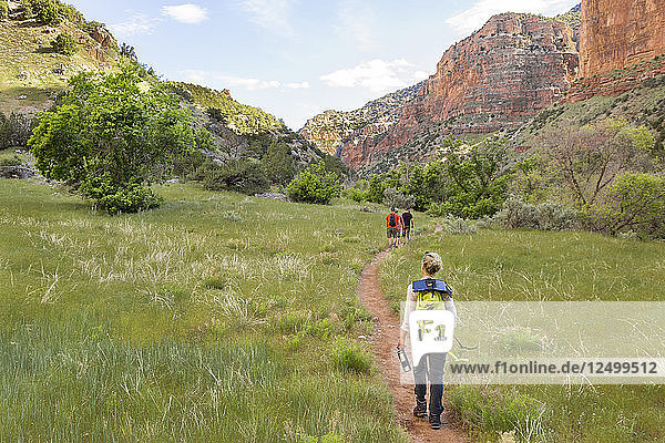 Group Of Hikers Trail Hiking Through Dinosaur National Monument