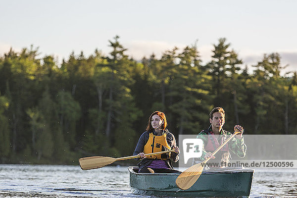 A Young Couple Paddles A Canoe On Long Pond In Maine's North Woods Near Greenville  Maine