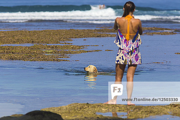 Woman standing on beach while dog swims.Bali island.Indonesia.