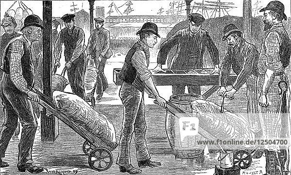 Dockers unloading sugar at West India Docks  London  1889. Artist: Unknown