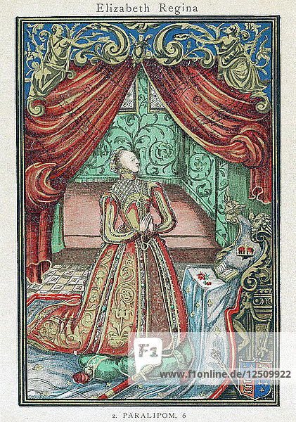 Elizabeth I  Queen of England and Ireland  1569. Artist: Unknown