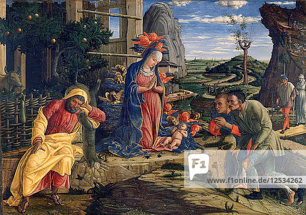 The Adoration of the Shepherds  c1450. Artist: Andrea Mantegna