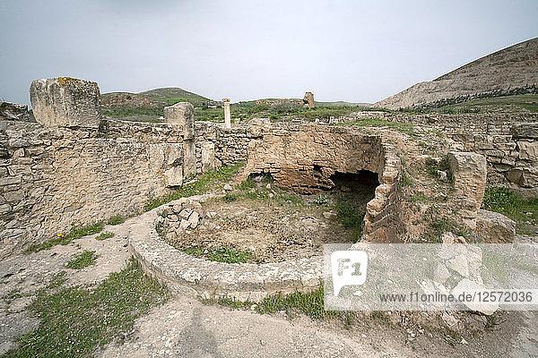 The House of the Hunting Scene  Bulla Regia  Tunisia. Artist: Samuel Magal