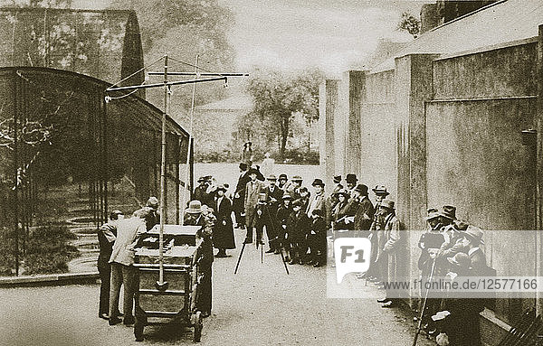 BBC broadcast from the aviary at London Zoo  20th century. Artist: Unknown