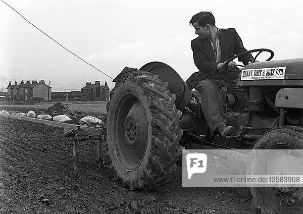 Road construction work  Doncaster  South Yorkshire  November 1955. Artist: Michael Walters