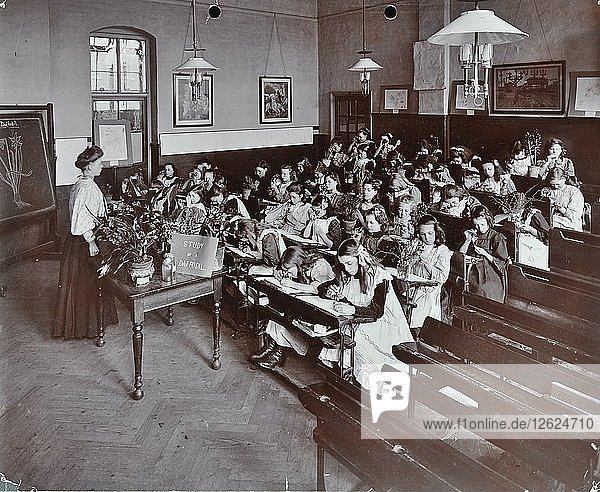 Nature lesson  Albion Street Girls School  Rotherhithe  London  1908. Artist: Unknown.