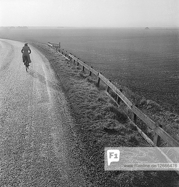 Woman cycling along a road raised up above the surrounding fenland  Cambridgeshire  early 1950s. Artist: John Gay.