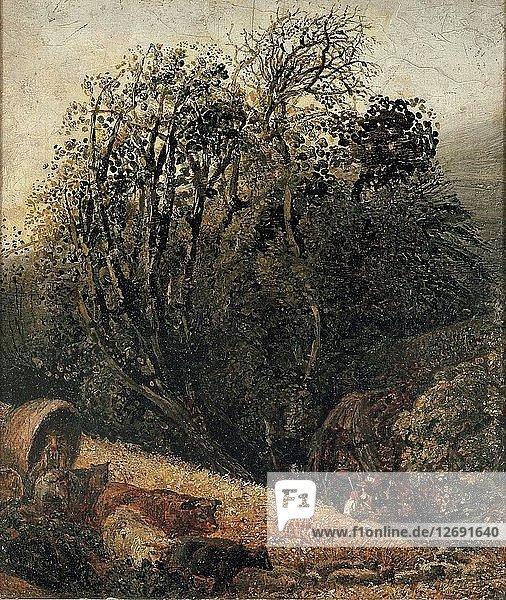 A Cornfield Bordered by Trees  c1833-1834. Artist: Samuel Palmer.