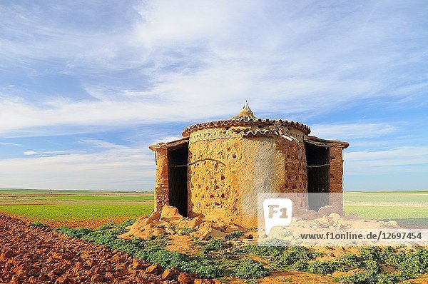 Old dovecote. Villarr?n de Campos. Tierra de Campos region. Zamora province. Castilla y Le?n. Spain