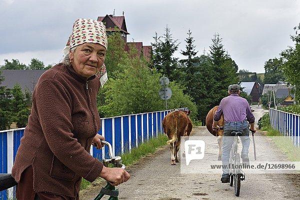 Village of Chocholow  Podhale region  Malopolska Province (Lesser Poland)  Poland  Central Europe.