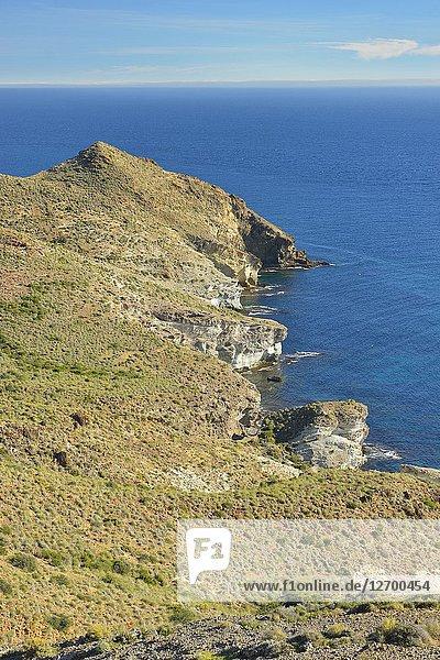 Coastline  Cabo de Gata Natural Park  Almeria province  Andalusia  Spain.