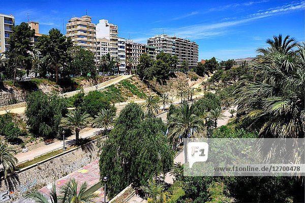 Modern part of Elche city on the bank of Vinalopo river  facing Palmeral - date palm orchards - designated by UNESCO as a World Heritage Site  Elche  Elx  Valencian Community  Spain  Europe