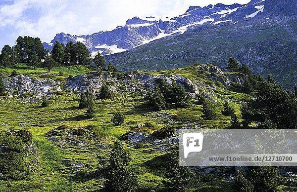 Estos Valley. Pyrenees  Aragon. Spain