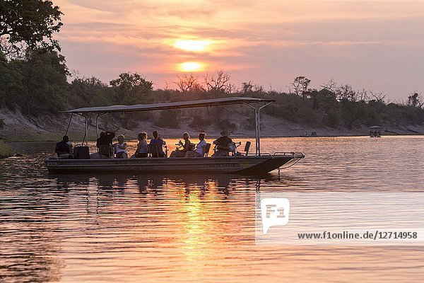 Africa,  Southern Africa,  Bostwana,  Chobe i National Park,  Chobe river, . boat full of wildlife photographers.