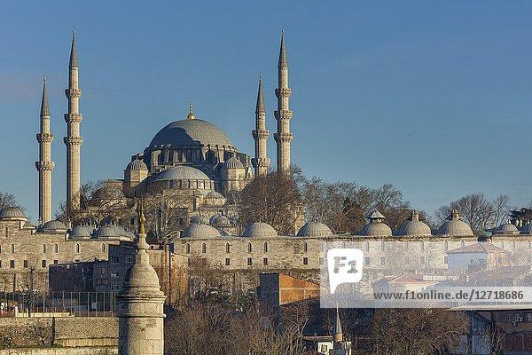 Cityscape  Suleymaniye Mosque  Istanbul  Turkey.