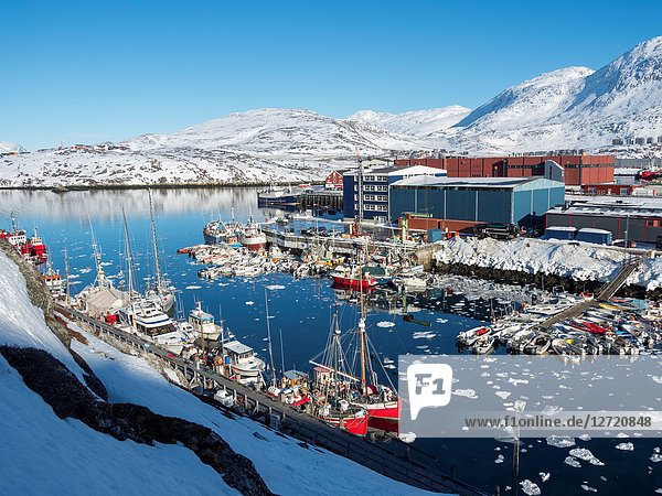Nuuk Harbour. Nuuk  the capital of Greenland. America  North America  Greenland.