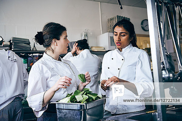 Multi-ethnic female chefs discussing over vegetable in commercial kitchen