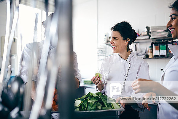 Male and female chefs discussing over leaf vegetable in commercial kitchen