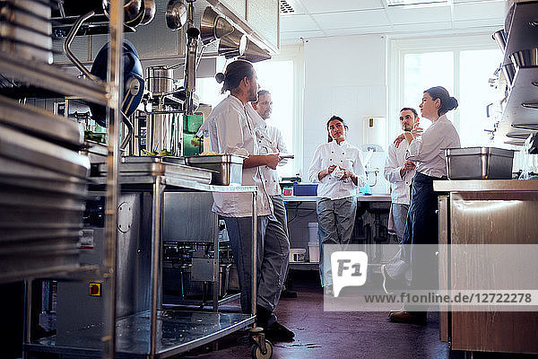 Male and female chefs having discussion in commercial kitchen