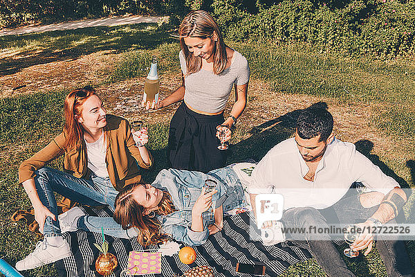High angle view of young multi-ethnic friends enjoying picnic during summer at back yard