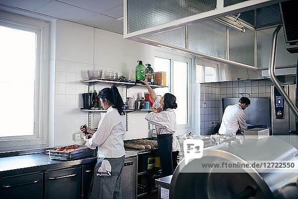 Female and male chefs working in commercial kitchen