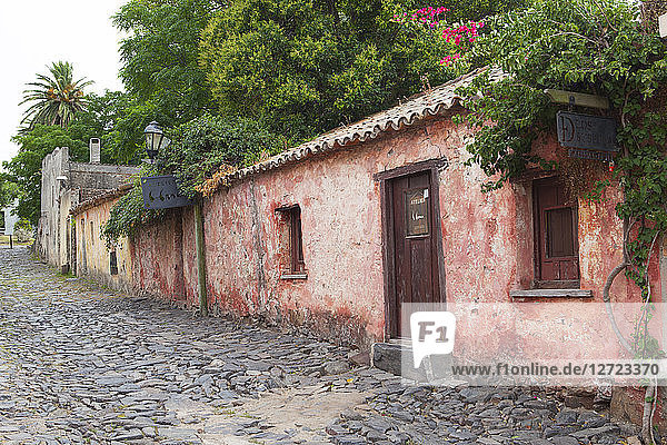 Uruguay  Colonia del Sacramento  pink paved alley of the time of the Portuguese colonization  17th Century
