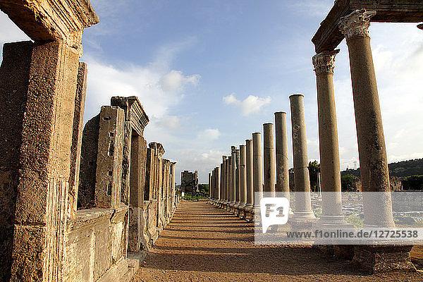 Turkey,  province of Antalya,  Aksu,  archaeological site of Perge (or Perga),  the Agora